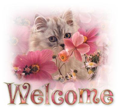 cicas_welcome.jpg